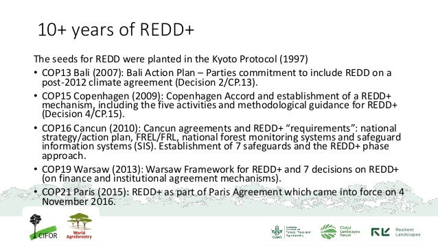 REDD+ and its implementation in Indonesia Slide 3