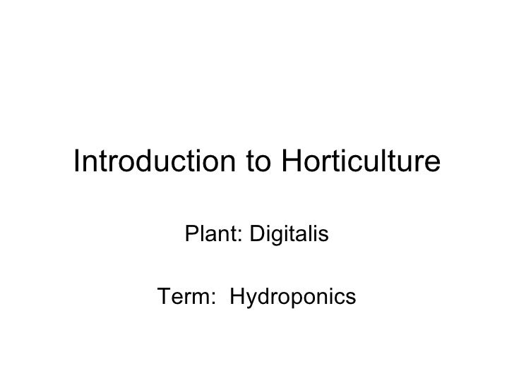 Introduction to Horticulture Plant: Digitalis Term:  Hydroponics