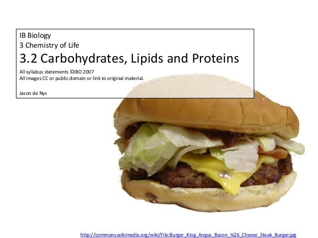 Ib Biology Core 32 Carbohydrates Lipids And Proteins