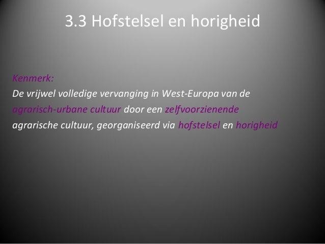 3.3 Hofstelsel en horigheidKenmerk:De vrijwel volledige vervanging in West-Europa van deagrarisch-urbane cultuur door een ...