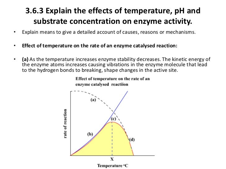 the effect of temperature and ph on enzyme activity
