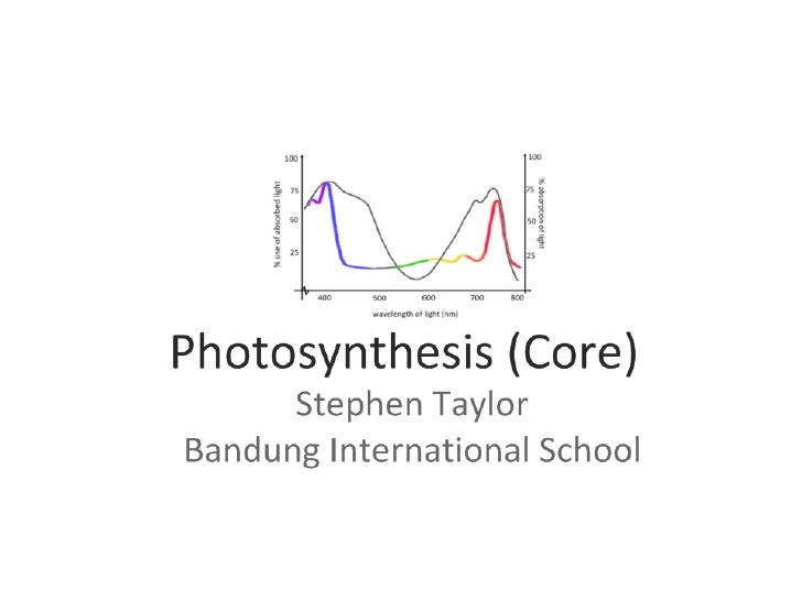 Photosynthesis (3.8 Core)