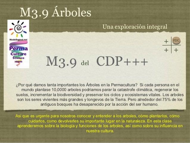 M3.9 Árboles                                                Una exploración integral                                      ...