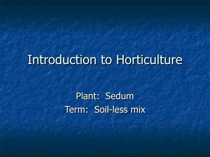 Introduction to Horticulture Plant:  Sedum Term:  Soil-less mix