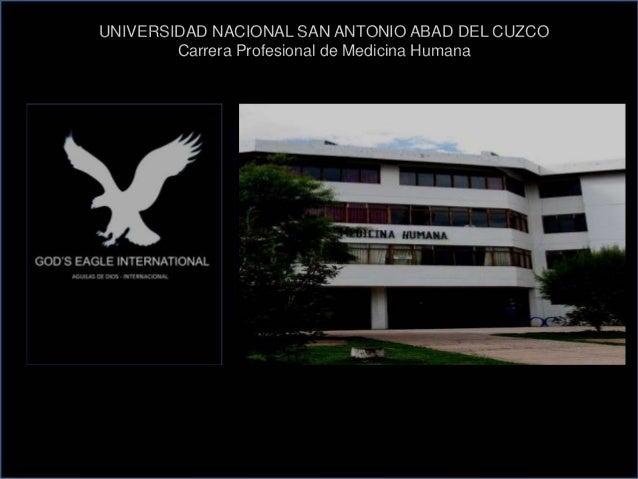 UNIVERSIDAD NACIONAL SAN ANTONIO ABAD DEL CUZCO Carrera Profesional de Medicina Humana