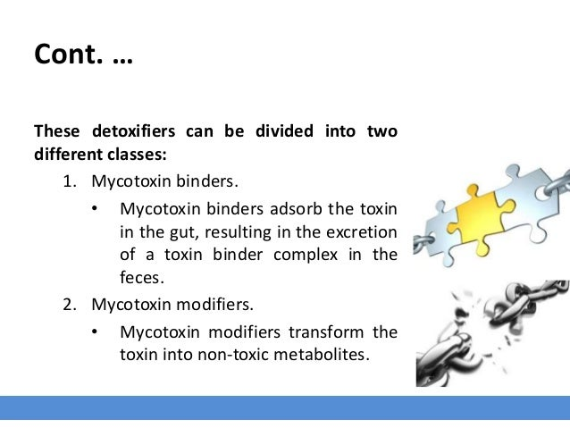 Antimycotoxin_Mycotoxin_Binders