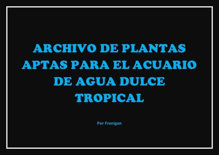 ARCHIVO DE PLANTASAPTAS PARA EL ACUARIO   DE AGUA DULCE      TROPICAL         Por Franigan