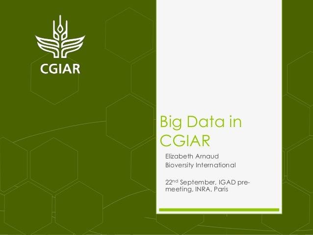 Big Data in CGIAR Elizabeth Arnaud Bioversity International 22nd September, IGAD pre- meeting, INRA, Paris