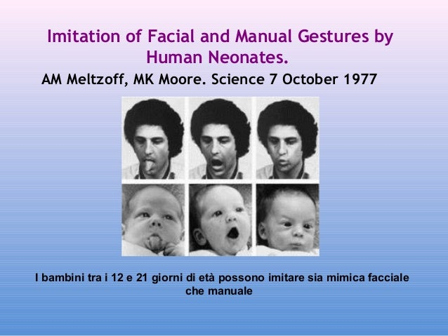 Imitation of Facial and Manual Gestures by Human Neonates. AM Meltzoff, MK Moore. Science7 October 1977  I bambini tra i...