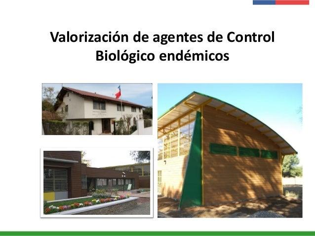 Valorización de agentes de Control Biológico endémicos
