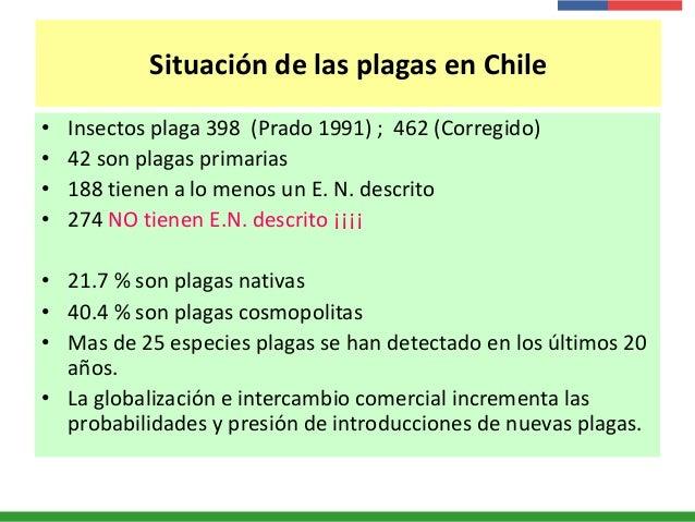 Situación de las plagas en Chile • Insectos plaga 398 (Prado 1991) ; 462 (Corregido) • 42 son plagas primarias • 188 tiene...