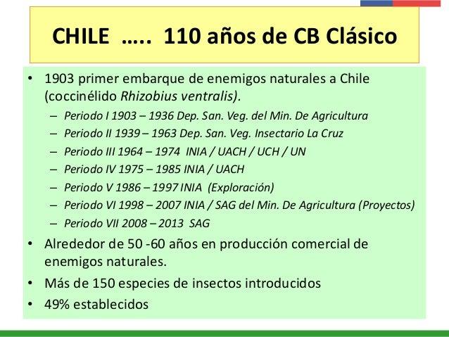 CHILE ….. 110 años de CB Clásico • 1903 primer embarque de enemigos naturales a Chile (coccinélido Rhizobius ventralis). –...