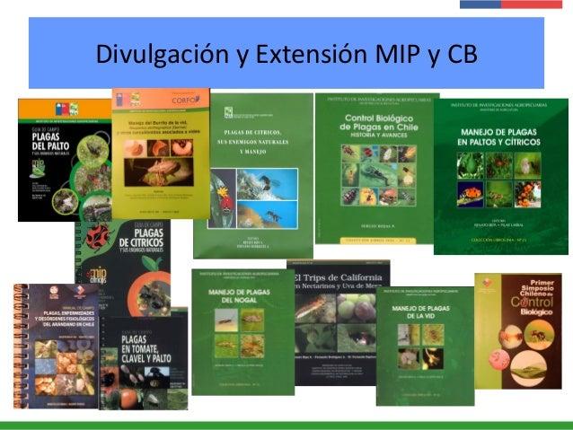 Divulgación y Extensión MIP y CB