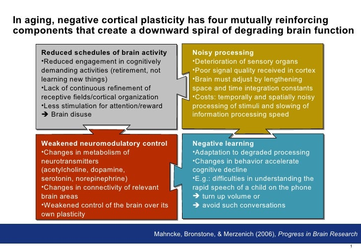 In aging, negative cortical plasticity has four mutually reinforcing components that create a downward spiral of degrading...