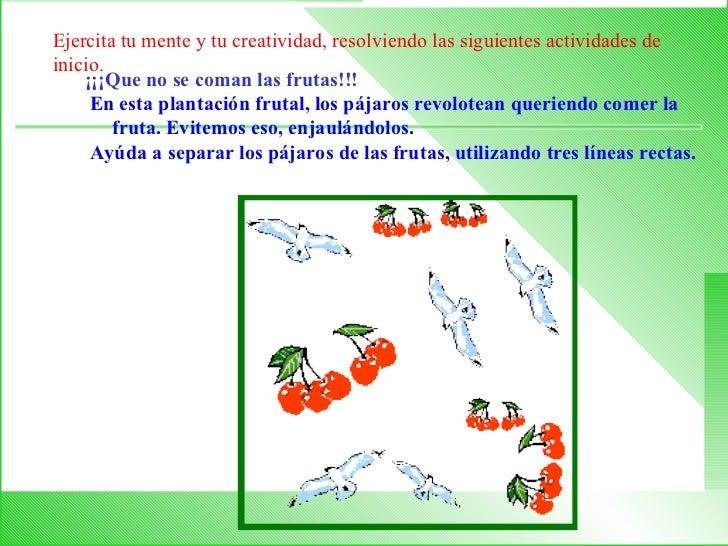 ¡¡¡Que no se coman las frutas!!!  En esta plantación frutal, los pájaros revolotean queriendo comer la fruta. Evitemos es...