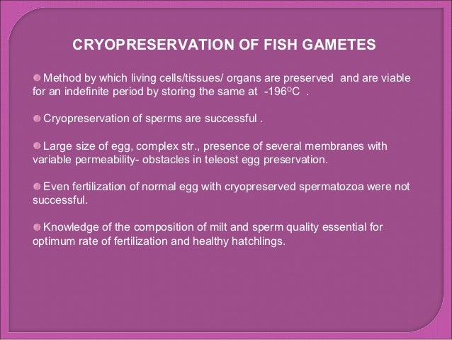 CRYOPRESERVATION OF FISH GAMETES   Method by which living cells/tissues/ organs are preserved and are viablefor an indefin...