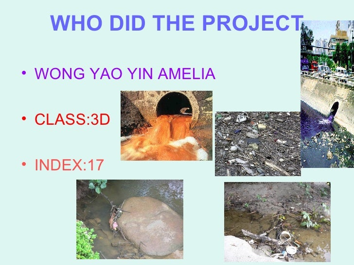 WHO DID THE PROJECT <ul><li>WONG YAO YIN AMELIA </li></ul><ul><li>CLASS:3D </li></ul><ul><li>INDEX:17 </li></ul>