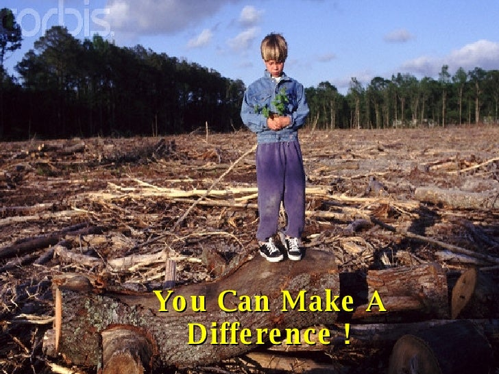 deforestation the causes effects and controlling techniques environmental sciences essay A guide to writing a cause and effect research paper  has an environmental science theme during their first year at the school  effects of deforestation on the .