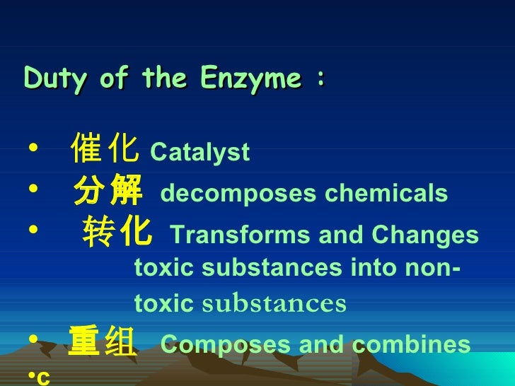Duty of the Enzyme  : <ul><li>催化   Catalyst </li></ul><ul><li>分解   decomposes chemicals </li></ul><ul><li>转 化   Transforms...