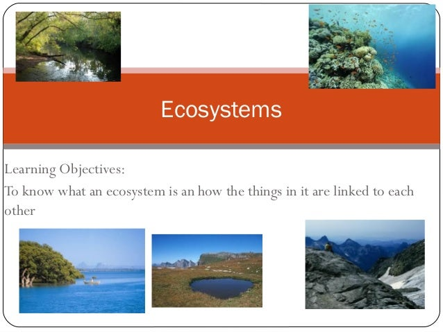 EcosystemsLearning Objectives:To know what an ecosystem is an how the things in it are linked to eachother