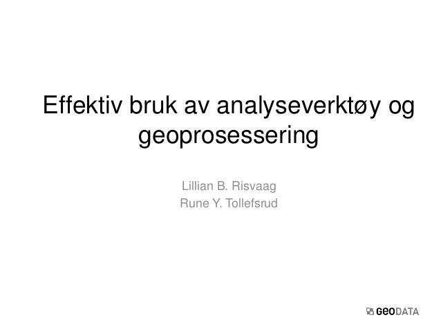 Lillian B. RisvaagRune Y. TollefsrudEffektiv bruk av analyseverktøy oggeoprosessering