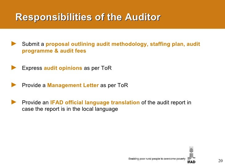 duties and responsibilities of auditor pdf