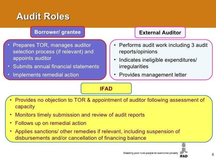 External Audit Report Audit External Audit External Monitoring