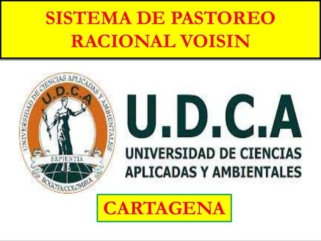 cSISTEMA DE PASTOREORACIONAL VOISINCARTAGENA