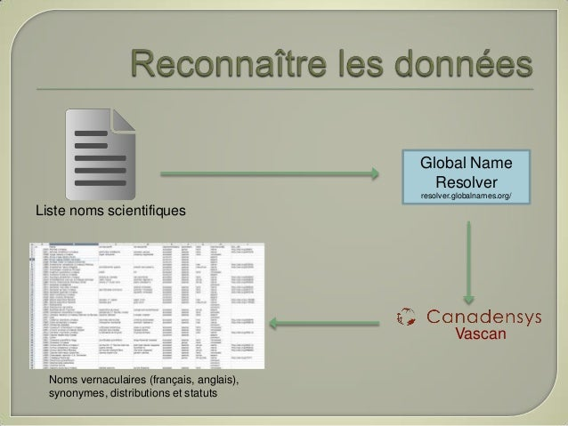 Global Name                                              Resolver                                            resolver.glob...