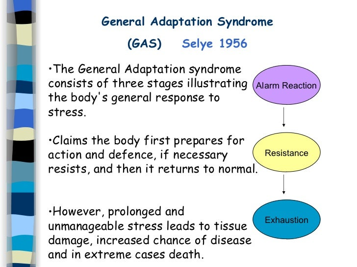 3. general adaptation syndrome, Skeleton