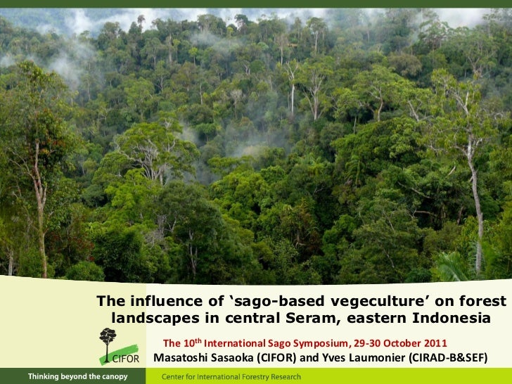 The influence of 'sago-based vegeculture' on forest  landscapes in central Seram, eastern Indonesia        The 10th Intern...