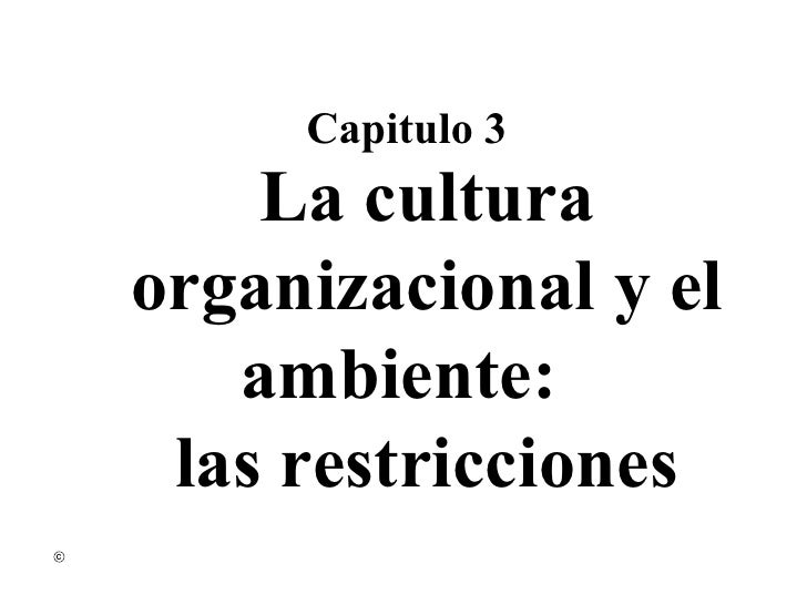 La cultura organizacional y el ambiente :   las restricciones Capitulo 3
