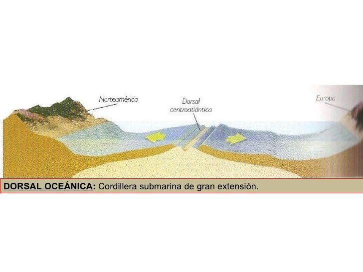 DORSAL OCEÁNICA :  Cordillera submarina de gran extensión.