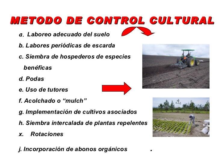 3 manejo ecologico de plagas Rotaciones de cultivos ecologicos
