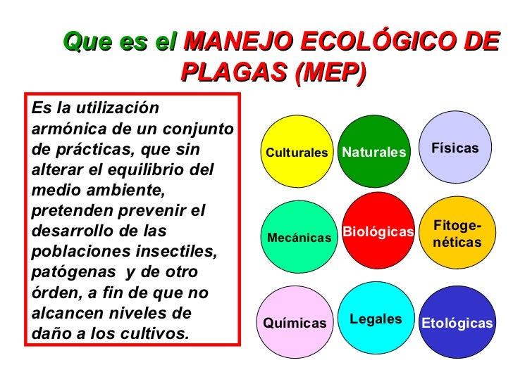 3. Manejo Ecologico De Plagas Slide 3