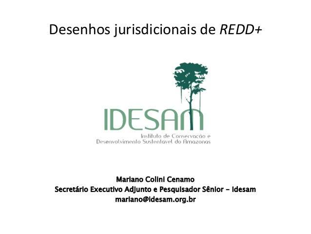 Desenhos jurisdicionais de REDD+  REDD+  Mariano Colini Cenamo  Secretário Executivo Adjunto e Pesquisador Sênior - Idesam...
