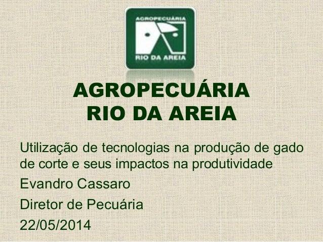 AGROPECUÁRIA RIO DA AREIA Utilização de tecnologias na produção de gado de corte e seus impactos na produtividade Evandro ...