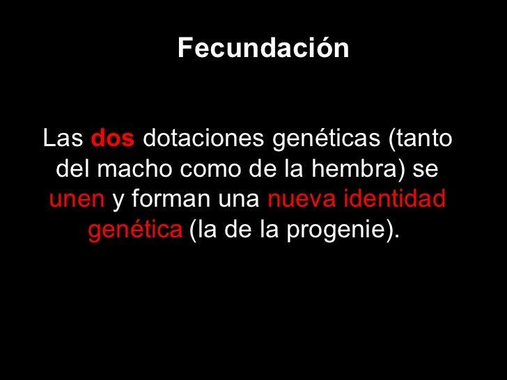 Fecundación Las  dos  dotaciones genéticas (tanto del macho como de la hembra) se  unen  y forman una  nueva identidad gen...