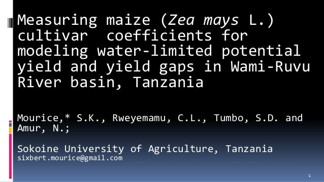 Measuring maize (Zea mays L.)cultivar coefficients formodeling water-limited potentialyield and yield gaps in Wami-RuvuRiv...