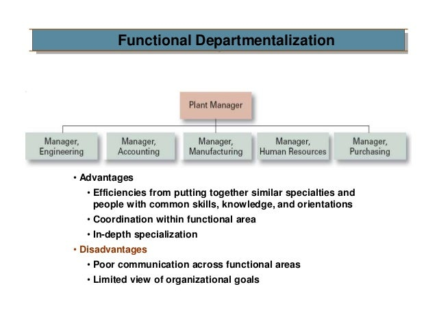 which of the following is an advantage of product departmentalization