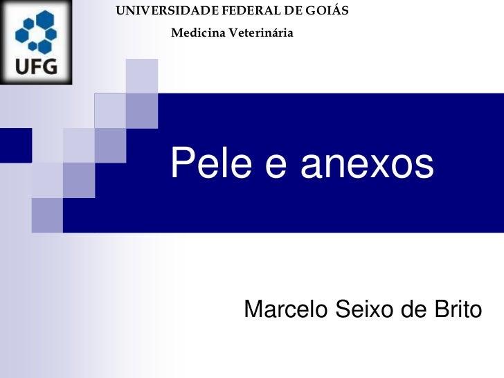 UNIVERSIDADE FEDERAL DE GOIÁS      Medicina Veterinária      Pele e anexos                 Marcelo Seixo de Brito