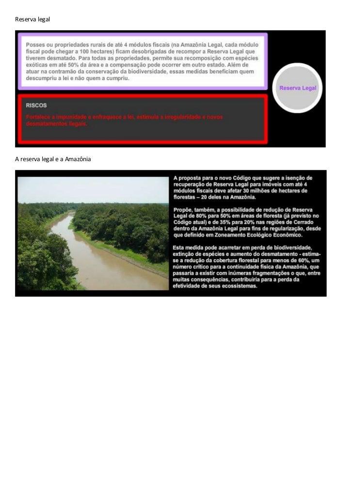 Reserva legal<br />A reserva legal e a Amazônia<br />