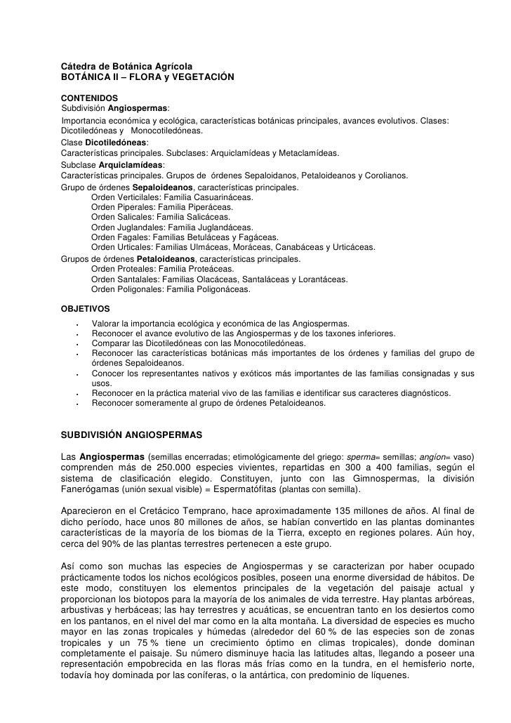 Cátedra de Botánica Agrícola BOTÁNICA II – FLORA y VEGETACIÓN  CONTENIDOS Subdivisión Angiospermas: Importancia económica ...