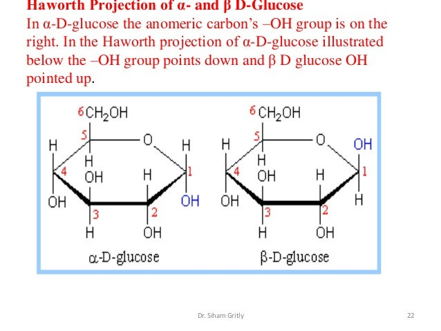 haworth projection Converting fischer to haworth and chair for d-glucose video 5 in the fischer  projection series shows you how to convert a linear sugar in the.