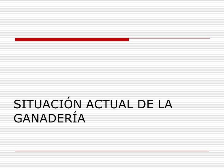 SITUACIÓN ACTUAL DE LA GANADERÍA
