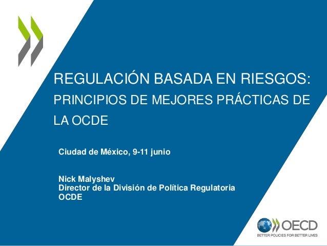 REGULACIÓN BASADA EN RIESGOS: PRINCIPIOS DE MEJORES PRÁCTICAS DE LA OCDE Ciudad de México, 9-11 junio Nick Malyshev Direct...