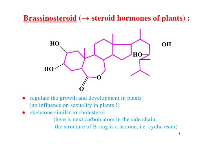 steroid ring nomenclature