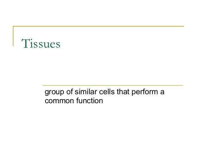 Tissues group of similar cells that perform a common function