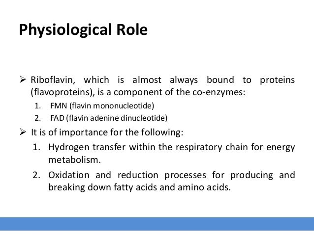 Physiological Role  Riboflavin, which is almost always bound to proteins (flavoproteins), is a component of the co-enzyme...