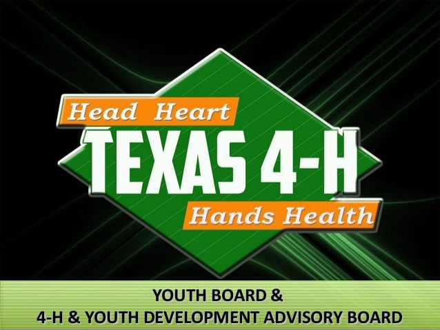 YOUTH BOARD &             YOUTH BOARD &4-H & YOUTH DEVELOPMENT ADVISORY BOARD4-H & YOUTH DEVELOPMENT ADVISORY BOARD